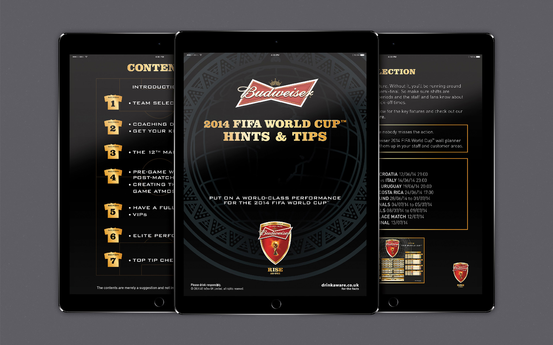 Budweiser - Hints and Tips (wholesale) ebook