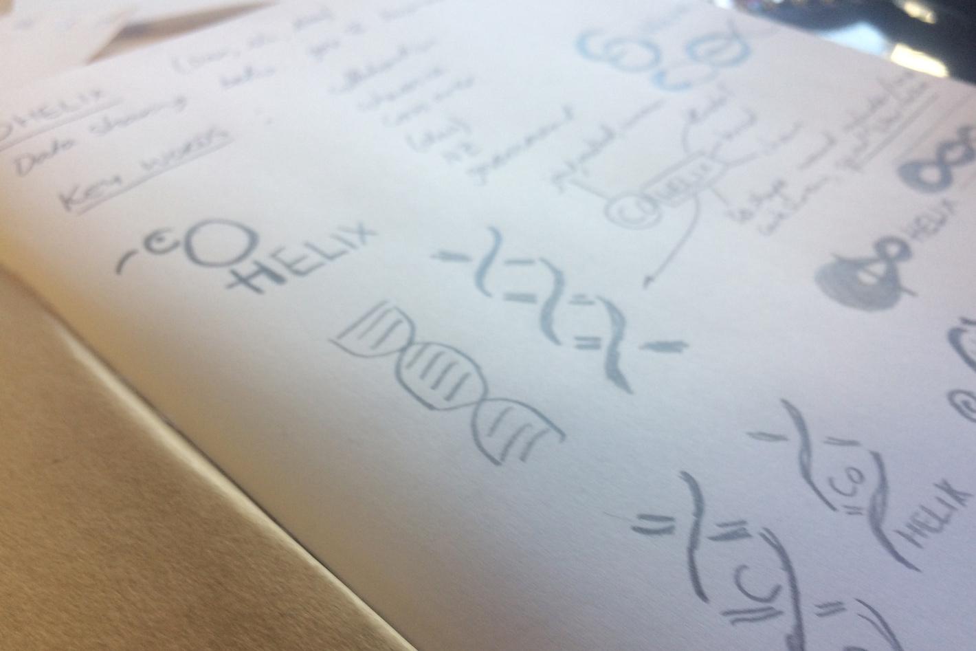 Cohelix sketches-01